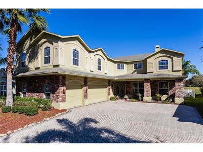 2319  HEDGEGATE CT  Orlando, FL MLS# O5415402