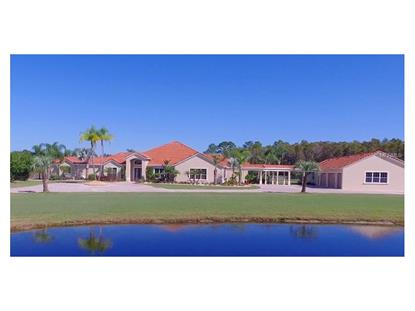 1465  WHISPERING MEADOW LN  Osteen, FL MLS# O5417277