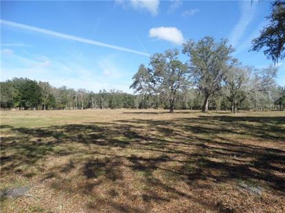 OLD TAMPA HIGHWAY Kissimmee, FL MLS# O5422610