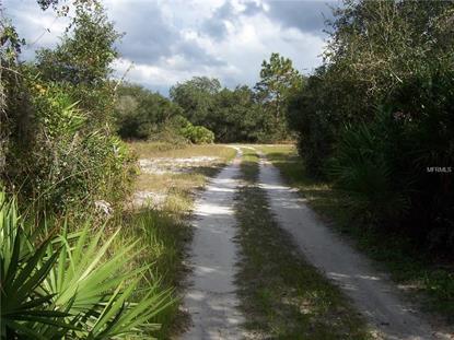 1333 HANCOCK LONE PALM RD Orlando, FL MLS# O5426179