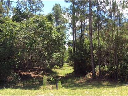 VALLEY STREAM DR Geneva, FL MLS# O5442045