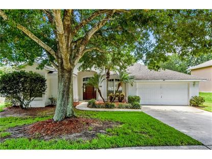 465 WATERWOOD CT Minneola, FL MLS# O5444008
