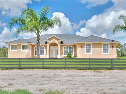 725 CABBAGE PALM PT Geneva, FL MLS# O5466121
