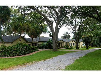 530 HILLSIDE DRIVE Auburndale, FL MLS# P4626900