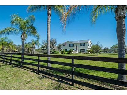 301 H L SMITH ROAD Haines City, FL MLS# P4629637