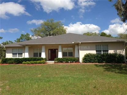 8055 LAKE HATCHINEHA ROAD Haines City, FL MLS# P4630353