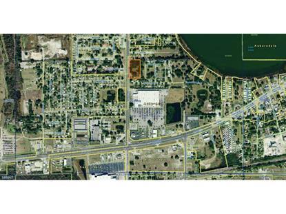 BERKLEY ROAD Auburndale, FL MLS# P4701768