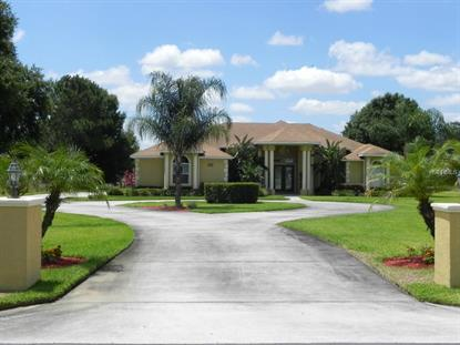 4046 TANNER  RD Haines City, FL MLS# P4705570