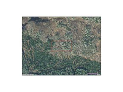 Holopaw Groves Rd, St Cloud, FL 34773