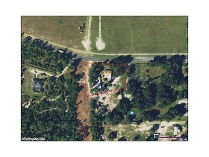 195 DOYLE ROAD Osteen, FL MLS# S4725543