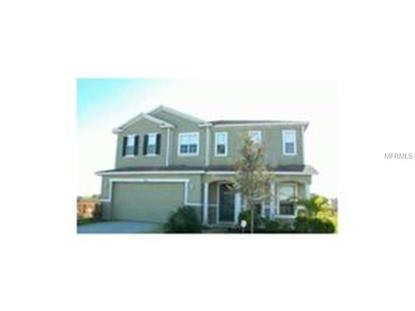 3414 Goldeneye Ln, Saint Cloud, FL 34772