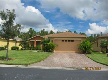 406 Indian Wells Ave, Kissimmee, FL 34759