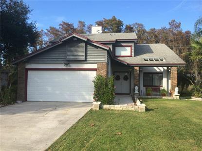 2311 Winding Ridge Ave N, Kissimmee, FL 34741