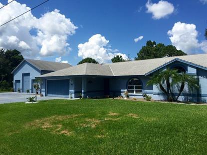 3921 GARIENDA  AVE Sebring, FL MLS# S4819451