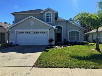 4395 Creekside Blvd, Kissimmee, FL 34746