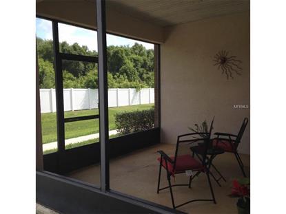 3490 Home Town Ln, Saint Cloud, FL 34769