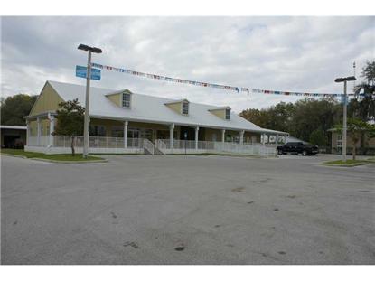 609 S ALEXANDER ST  Plant City, FL MLS# T2554274