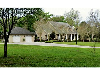 4065 MAJESTIC OAK LANE Brooksville, FL MLS# T2622542
