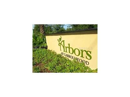 14904 ARBOR SPRINGS CIRCLE Tampa, FL MLS# T2623944