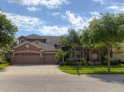 3349 MARBLE CREST DRIVE Land O Lakes, FL MLS# T2624955