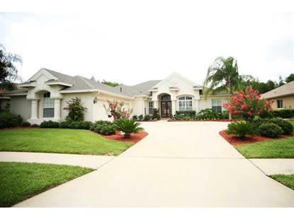 3138 SHEEHAN DRIVE Land O Lakes, FL MLS# T2626892