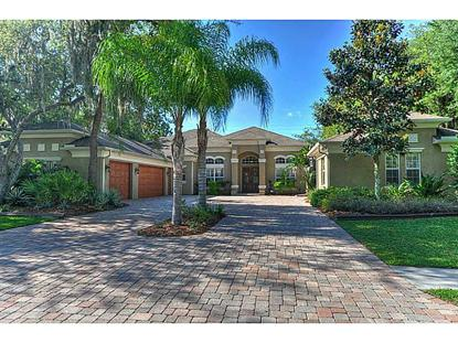 17840 MISSION OAK DRIVE Lithia, FL MLS# T2626986