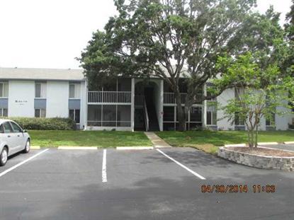 13103 CYPRESS HILL DRIVE Hudson, FL MLS# T2627709