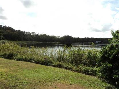 4233 BANJO LAKE  RD Land O Lakes, FL MLS# T2701154