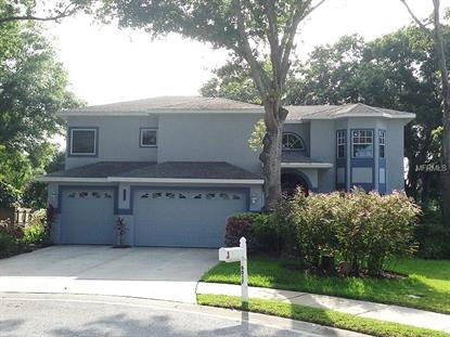 6017 LA PLAYA COURT Safety Harbor, FL MLS# T2701822