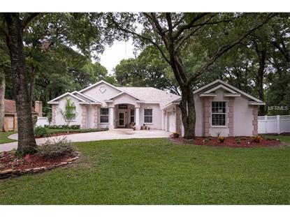 2901 MANOR RIDGE PLACE Valrico, FL MLS# T2704966