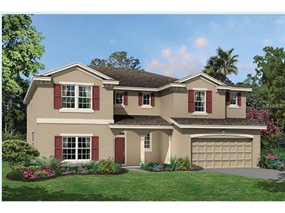 8520 BLUEVINE SKY  DR Land O Lakes, FL MLS# T2713195
