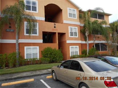 16555 ENCLAVE VILLAGE DRIVE Tampa, FL MLS# T2713259