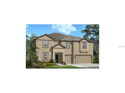 3866 WELLINGBOROUGH  CT Land O Lakes, FL MLS# T2723042
