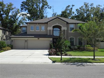 15619 Hampton Village Dr, Tampa, FL 33618