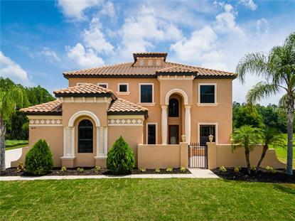 3618 BALLASTONE  DR Land O Lakes, FL MLS# T2723150