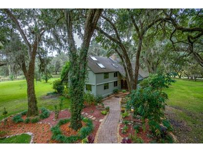 7125 GRIFFIN  RD Brooksville, FL MLS# T2726375