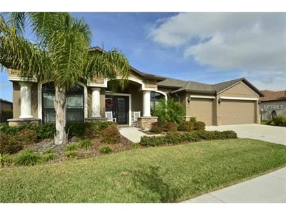 345 HOPE BAY  LOOP Apollo Beach, FL MLS# T2727496