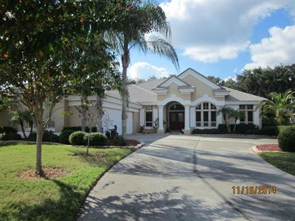 4495 FAIRWAY OAKS  DR Mulberry, FL MLS# T2727699