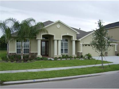 21422 DRAYCOTT  WAY Land O Lakes, FL MLS# T2736565