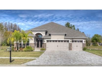 21219 QUIET HAVEN  CT Land O Lakes, FL MLS# T2739309