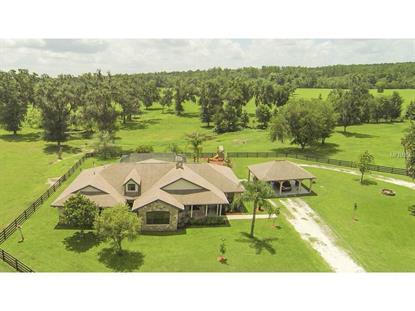 23290 CREEK HOLLOW Brooksville, FL MLS# T2742894