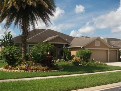 22752 COLLRIDGE  DR Land O Lakes, FL MLS# T2742954