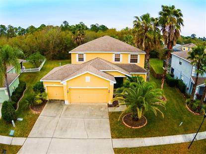 Fish hawk ranch fl real estate homes for sale in fish for Fish hawk fl