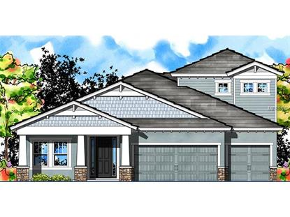 8318 SWISS CHARD  CIR Land O Lakes, FL MLS# T2743244