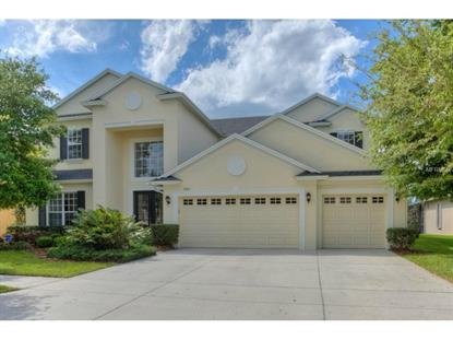 3410 MARBLE CREST  DR Land O Lakes, FL MLS# T2747477