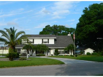 3724 FAWN GROVE  CT Land O Lakes, FL MLS# T2748266