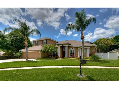 2927 WINDING TRAIL  DR Valrico, FL MLS# T2749613