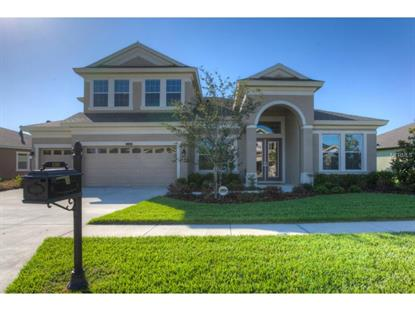 8319 SWISS CHARD  CIR Land O Lakes, FL MLS# T2755009