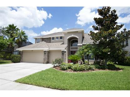 23509 VISTAMAR  CT Land O Lakes, FL MLS# T2757352