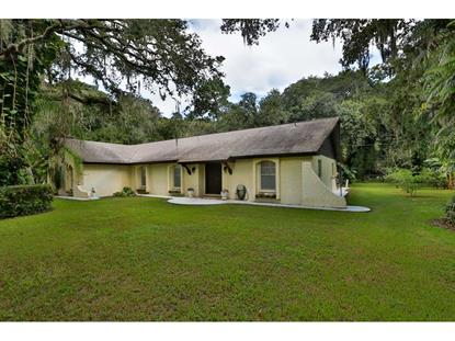 3212 LITTLE  RD Valrico, FL MLS# T2759317